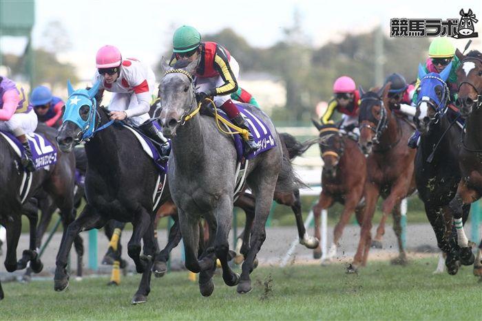 びっくり競馬研究所【競馬ラボ】レーヴディソール (Reve d'Essor) 12年2月中央抹消