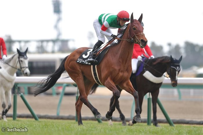 https://www-f.keibalab.jp/img/horse/2015104702/2015104702_04.jpg?1612705453