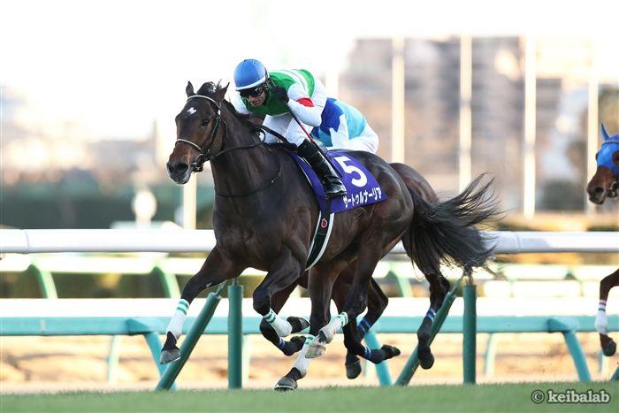 2018年は萩Sの勝ち馬サートゥルナーリアが勝利