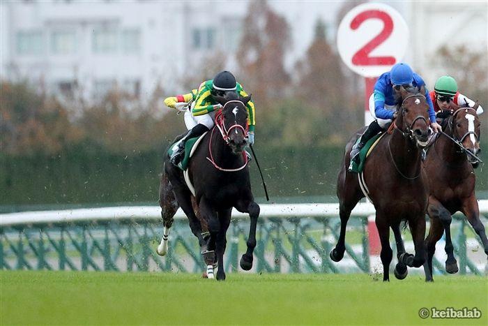 中日新聞杯のレース写真