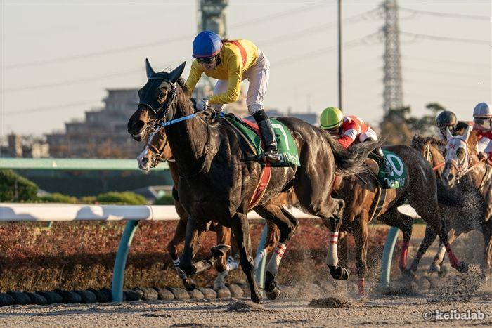 カペラSのレース写真