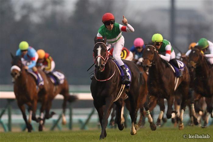 有馬記念のレース写真