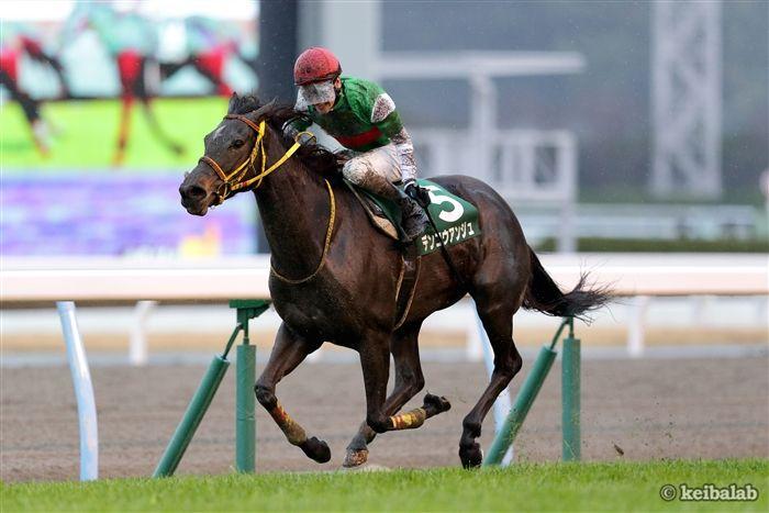 愛知杯のレース写真