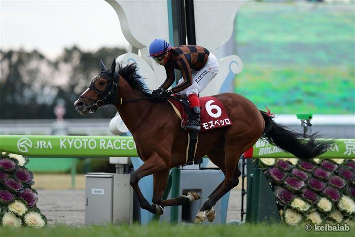 日経新春杯のレース写真