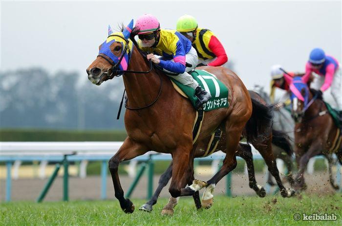 京都牝馬Sのレース写真