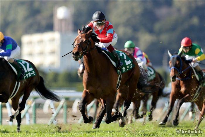 小倉大賞典のレース写真
