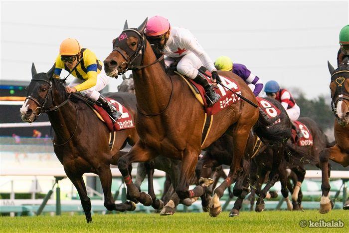 日経賞のレース写真