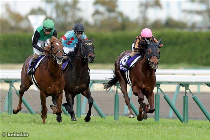 高松宮記念のレース写真