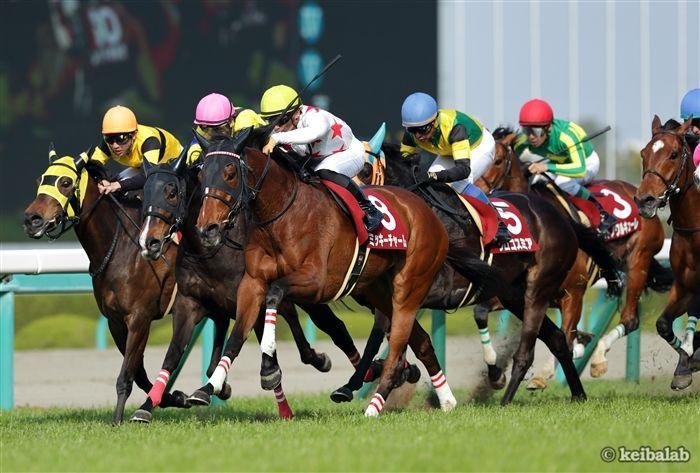 阪神牝馬Sのレース写真
