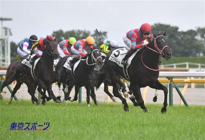 東京優駿のレース写真
