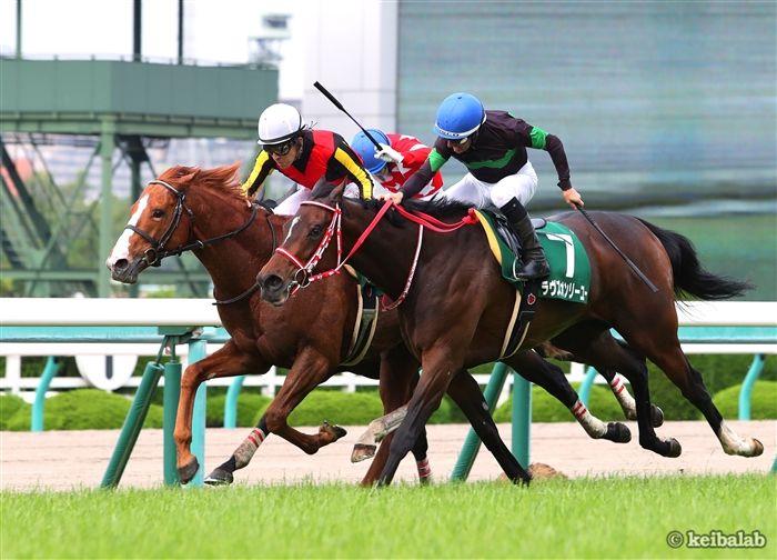 鳴尾記念のレース写真