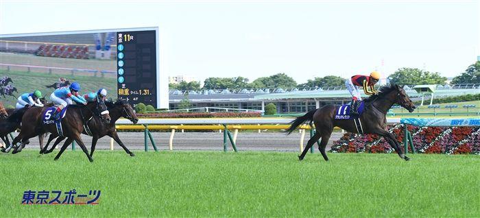 安田記念のレース写真