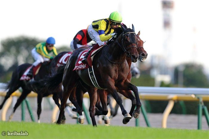 富士Sのレース写真