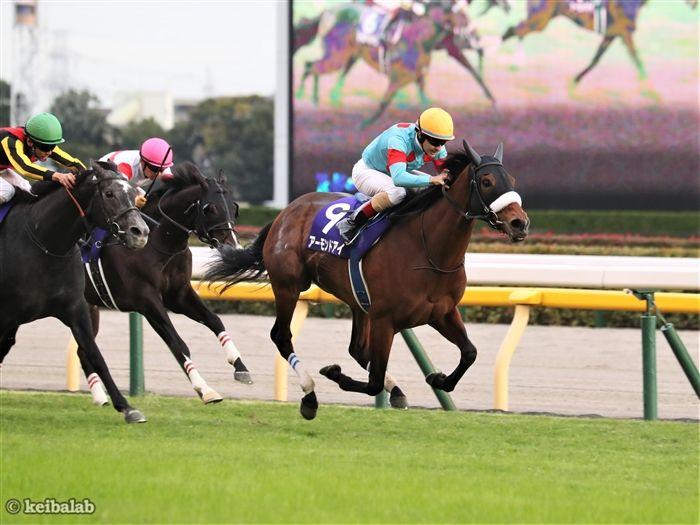 天皇賞(秋)のレース写真