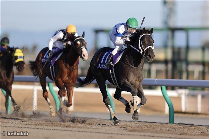チャンピオンのレース写真