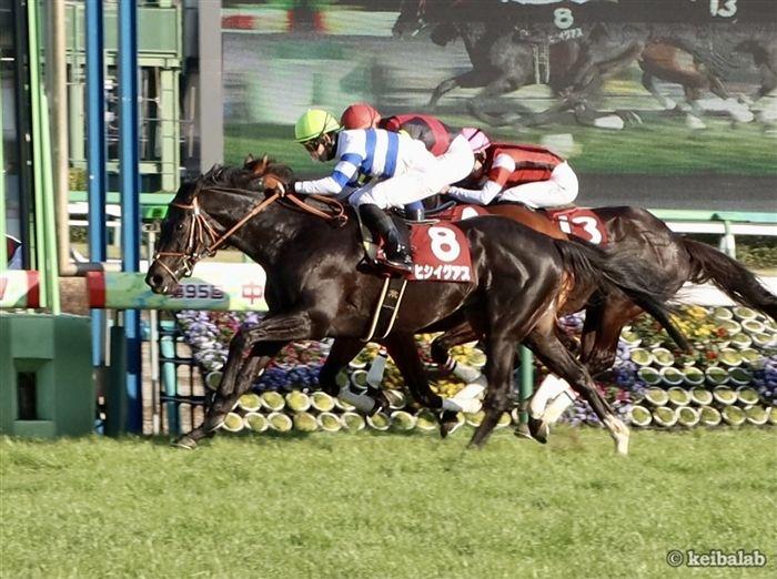 中山記念のレース写真