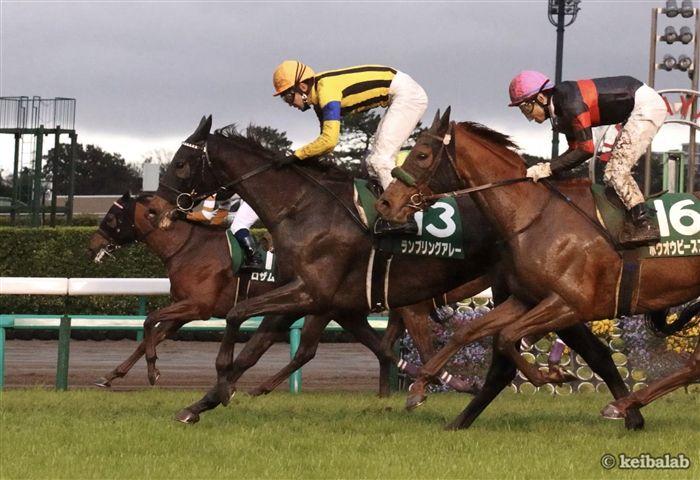 中山牝馬Sのレース写真