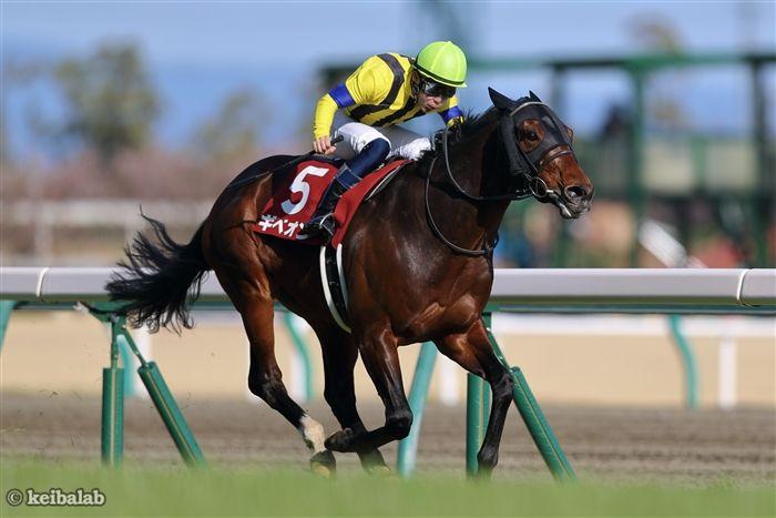 金鯱賞のレース写真