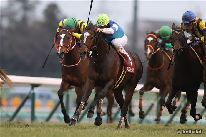 天皇賞(春)のレース写真