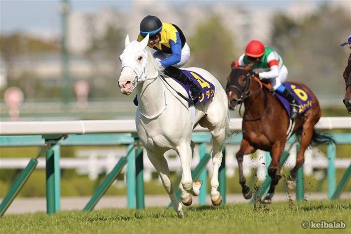 優駿牝馬のレース写真