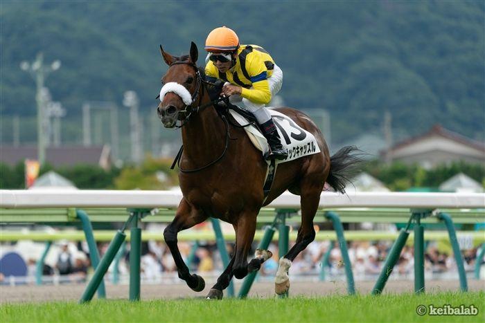 府中牝馬Sのレース写真