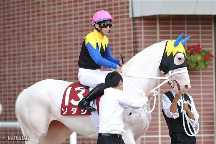 秋華賞のレース写真