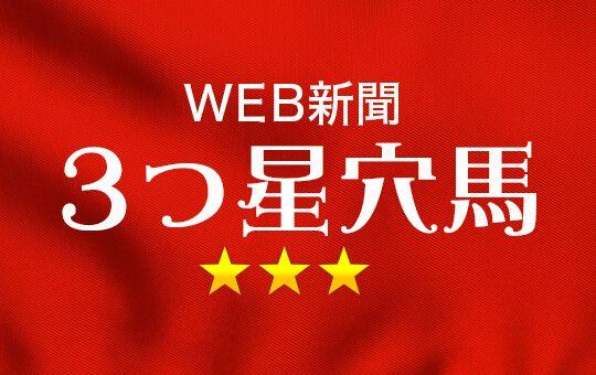 WEB新聞3つ星穴馬