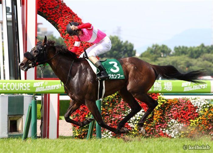 高松宮記念はワンツー!人気薄の牝馬が激アツの理由