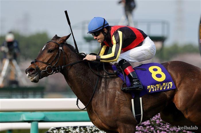 桜花賞では『前走1着馬』より買うべき馬がいる!
