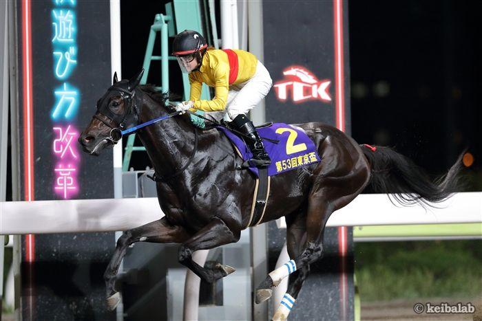 昨年の東京盃を勝ったコパノキッキング&藤田菜七子騎手