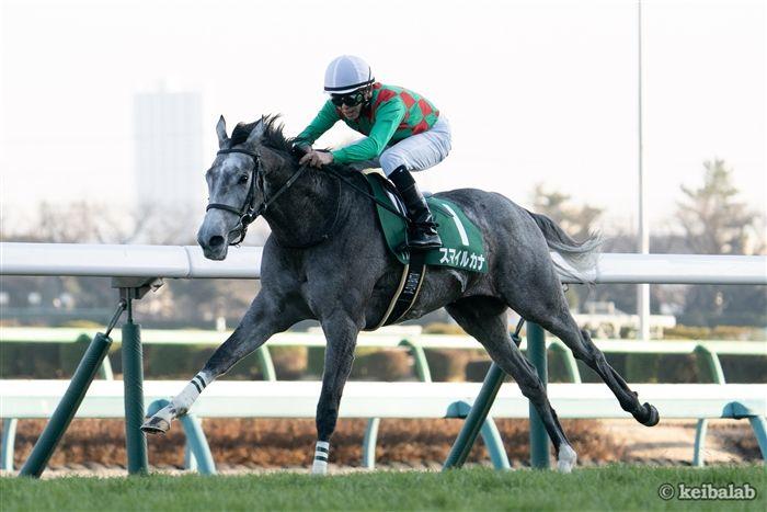 ディープ産駒の快速馬スマイルカナ