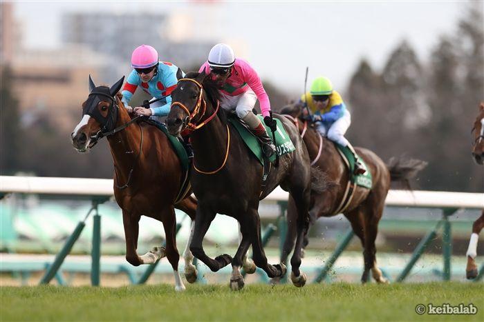 昨年の京成杯はクリスタルブラックが新馬から連勝で重賞初制覇