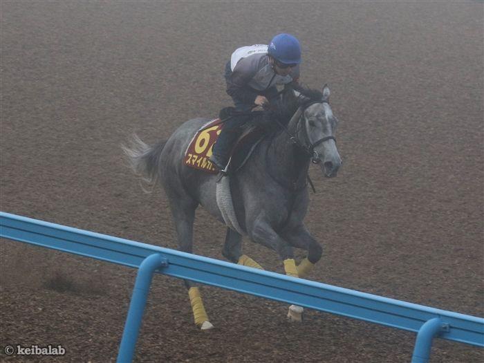 柴田大知騎手と挑むスマイルカナ
