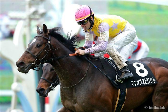 昨年の勝ち馬と同じ臨戦過程のマンオブスピリット