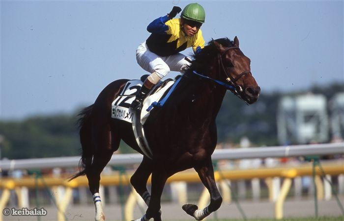 安藤勝己さんとのコンビでダービー馬に輝いたキングカメハメハ
