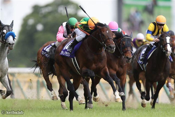 17年安田記念を豪脚で勝ったサトノアラジン