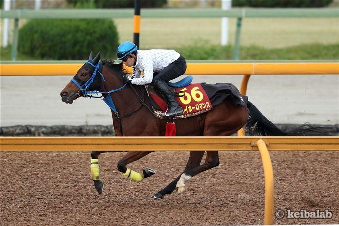 牝馬限定戦の安定感が光るレイホーロマンス