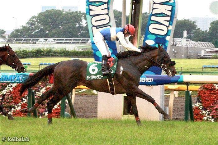 これで8勝全てが東京競馬場となったダイワキャグニー