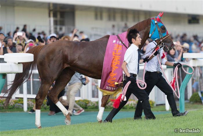 2015、16年と連覇した牝馬のベルカント