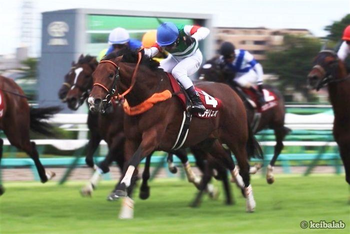 昨年のオールカマーは牝馬のセンテリュオが差し切り勝ち