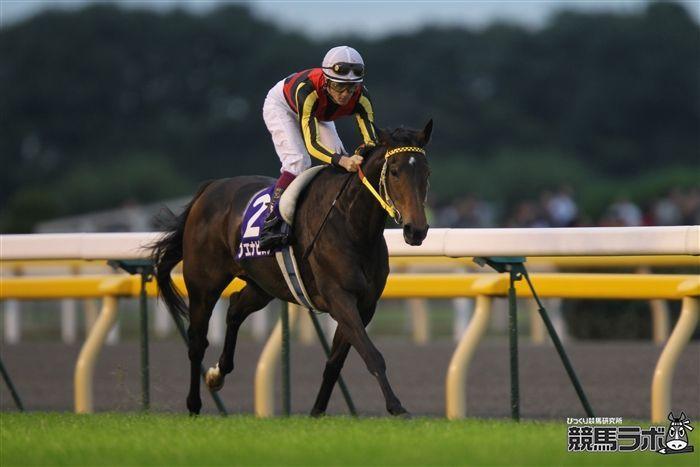 2009年の秋華賞で3着に敗れて牝馬3冠を逃したブエナビスタ<br>写真提供:競馬ラボ