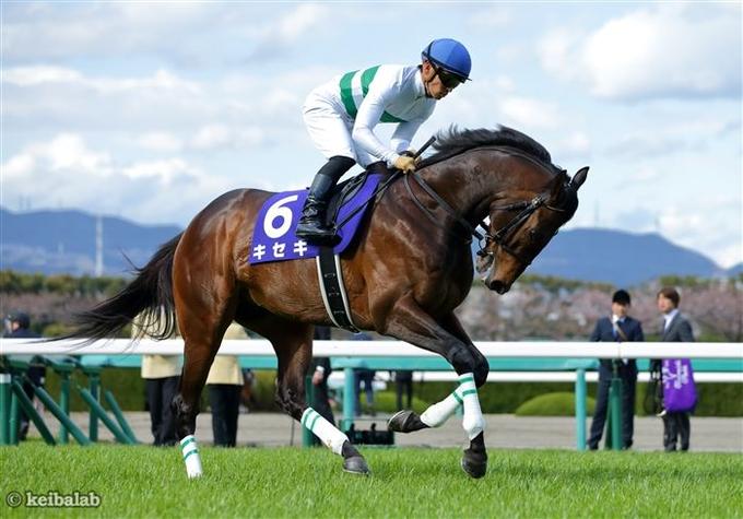 辻野厩舎への転厩が発表されたキセキ