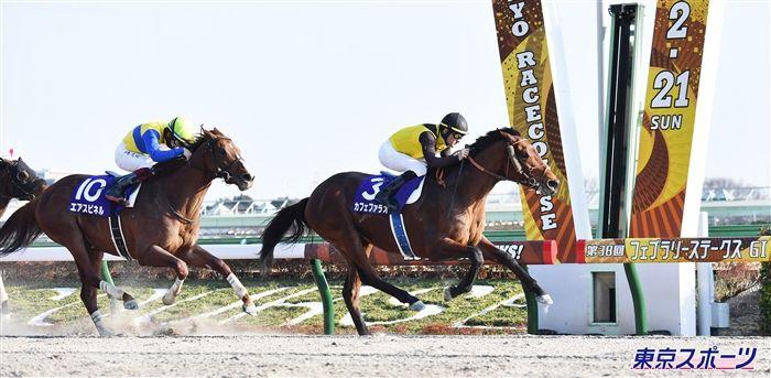 先行策から他馬を圧倒したカフェファラオ