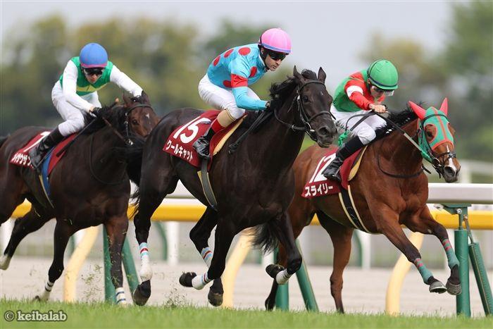 得意の東京で他馬を完封したクールキャット