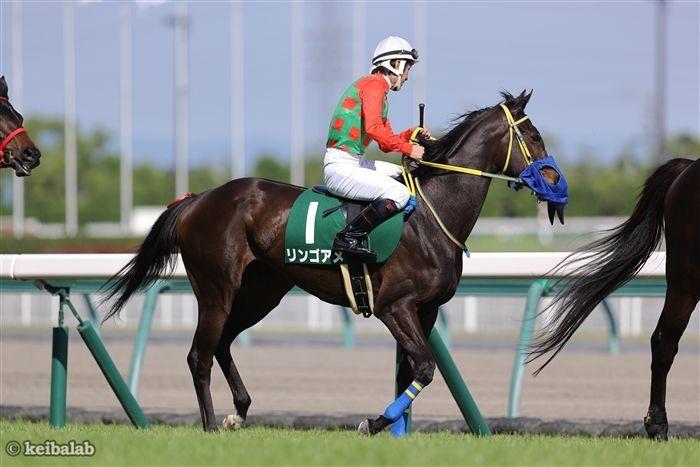 斤量50kgで出走できる3歳牝馬リンゴアメ
