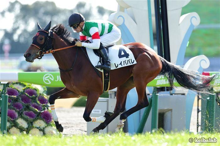 芝2200mのG1宝塚記念で3着に好走したレイパパレ<br>写真提供:競馬ラボ