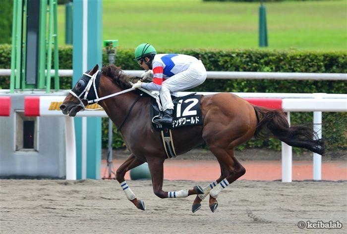 シリウスSと好相性の和田竜二騎手が騎乗するテンザワールド
