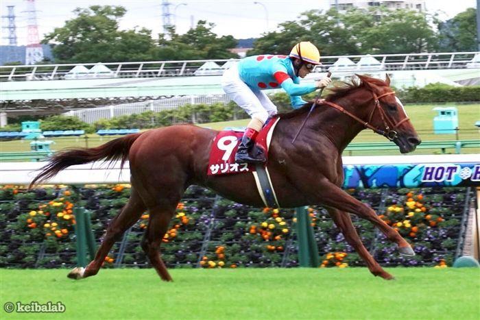 大柄な馬体がこのレースとマッチしそうなサリオス