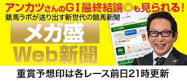 メガ盛データWEB新聞